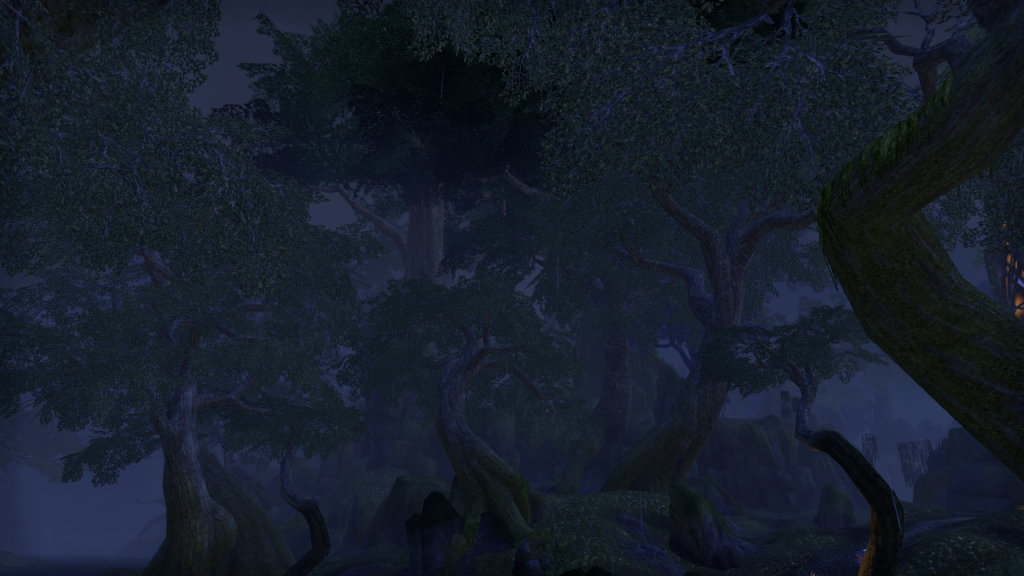 A forest at night. Screenshot taken from Elder Scrolls Online.